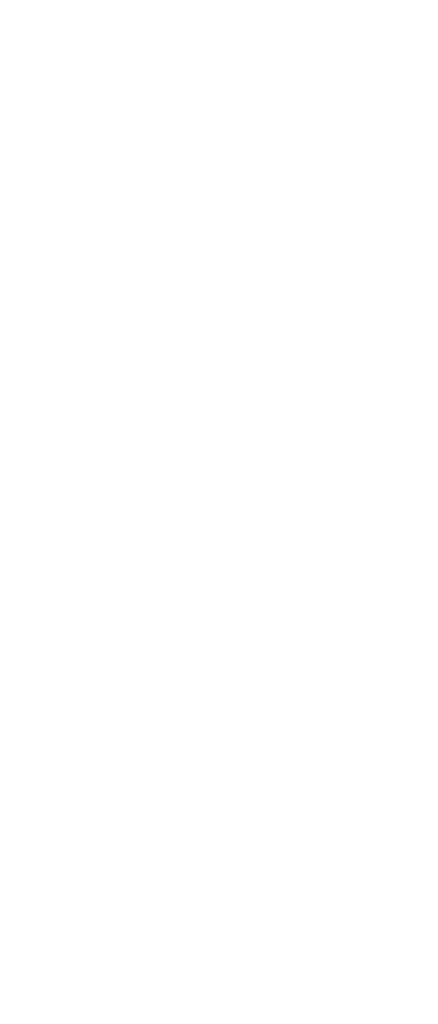 Portable Lifeline System